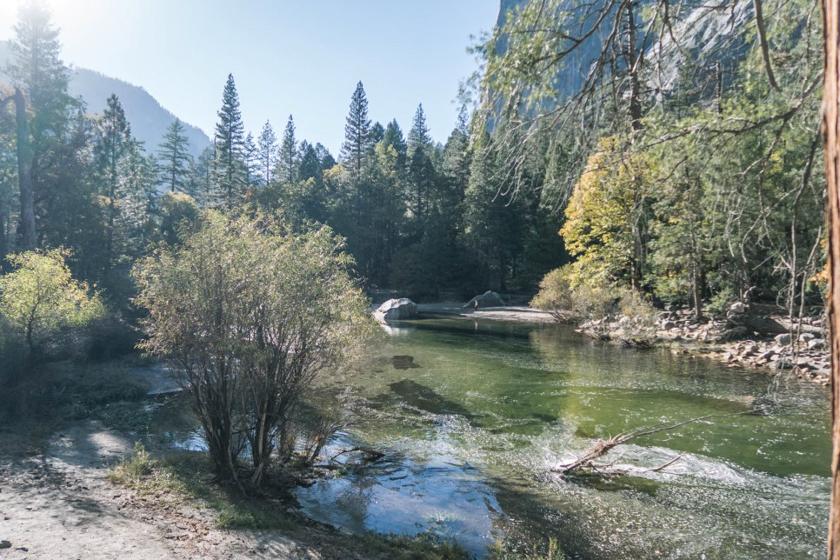 퇴근하고 세계여행 #6, 자연이 빚은 거대한 숲 – 미국, 요세미티 국립공원